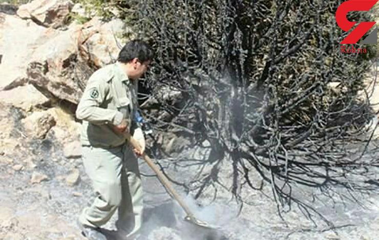 1.5 هکتار از مراتع منطقه حفاظت شده بزد تربت جام در آتش سوخت