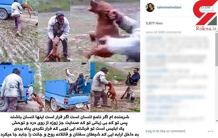 پست تهمینه میلانی برای شکنجه سگ شکاری