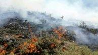 آتش سوزی «دینارکوه»آبدانان مهار شد