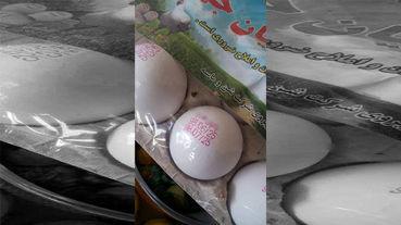 تخممرغهای که ۴ ماه دیگر تولید میشوند! +عکس