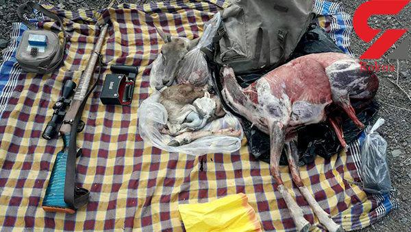 10 میلیون تومان جریمه به خاطر شکار و پوست کندن یک میش وحشی در کاشان +تصاویر