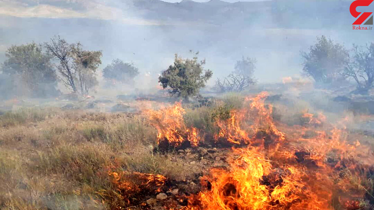 جنگلهای کوهدشت همچنان در آتش میسوزد