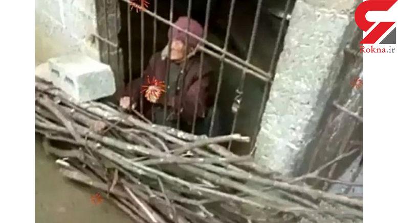 عروس ظالم مادرشوهرش را در مرغدانی حبس کرده بود +عکس های تلخ