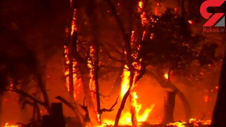 بیخانمانی استرالیایی در آتشسوزی زمینهای غربی