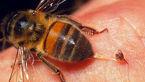 مرگ مرموز دختر 10 ساله با نیش زنبور