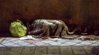 سیلی صاحبخانه، آقای معاون را کارتن خواب کرد!  / مرگ خیابان خواب ها در زمستان