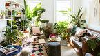 7 راهکار بالا بردن انرژی مثبت در خانه هایتان