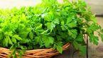 این سبزی معطر مخصوص دیابتی ها است