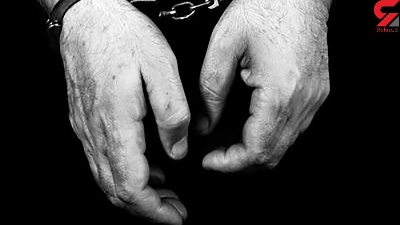 کلاهبرداری با ارائه چک های بلا محل / مرد راراکی بازداشت شد