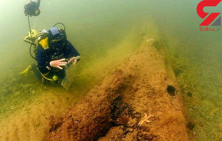 کشف جنگل 10 هزار ساله در اعماق دریای شمال