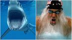 قهرمان شنای جهان با یک کوسه مسابقه می دهد + عکس