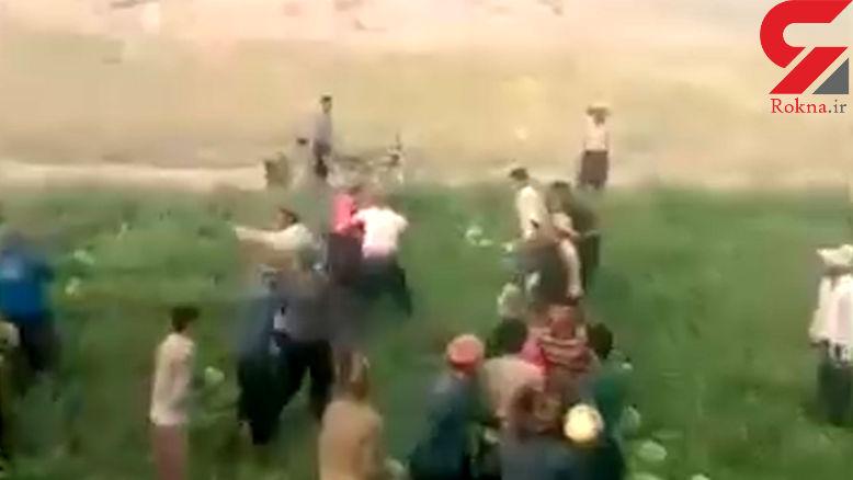 2 قبیله با هندوانه به جان هم افتادند! + فیلم دیدنی