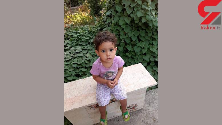 زهرا کوچولو را ربوده اند / پدر دختربچه بعد از 2 ماه قاطعانه ادعا کرد ! + فیلم