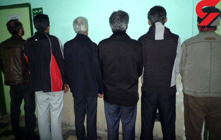 دستگیری 6 مرد به خاطر دزدیدن 6 گاو + عکس