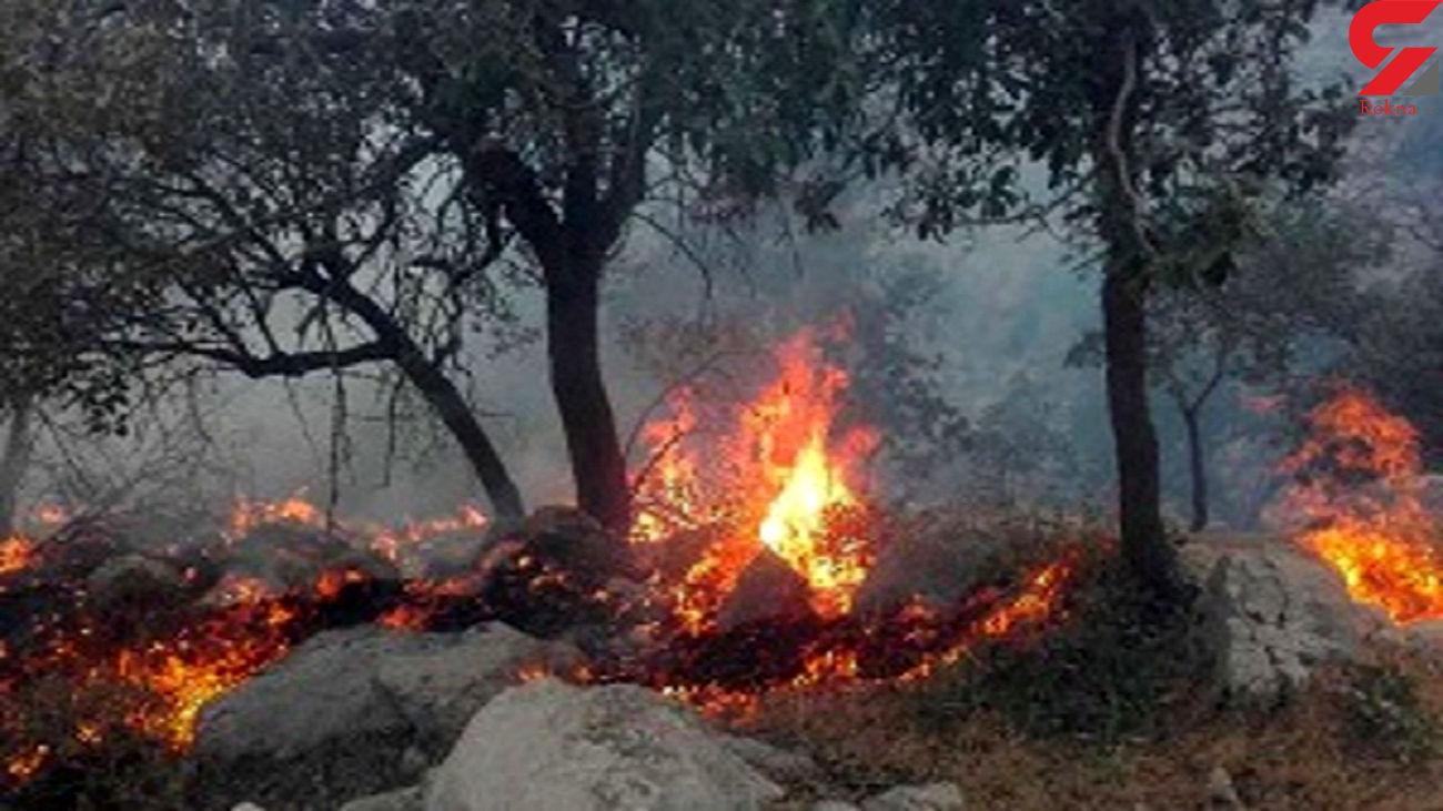 بیش از 3 هزار هکتار از اراضی کردستان در آتش سوخت