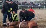 حادثه خونین در کورس اسبدوانی گنبد + عکس