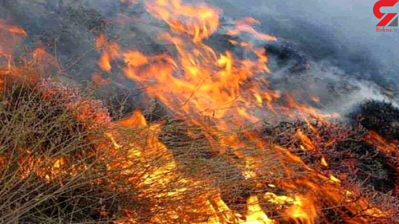 فیلم آتشسوزی های مشکوک مراتع کوهدشت لرستان