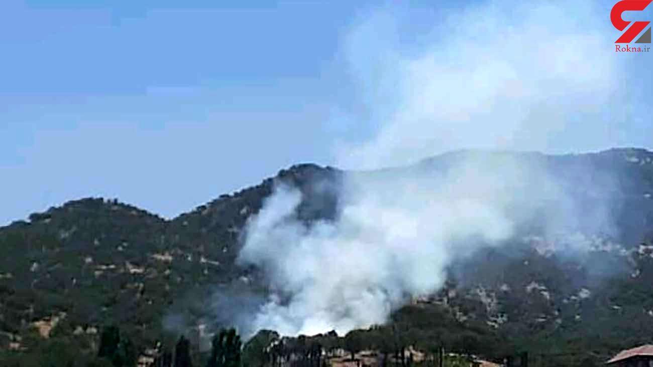 جنگلهای کوههای شرق یاسوج طعمه آتش شد