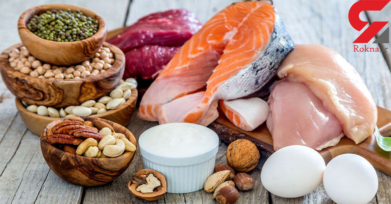 ارتباط میان پروتئین و چاقی