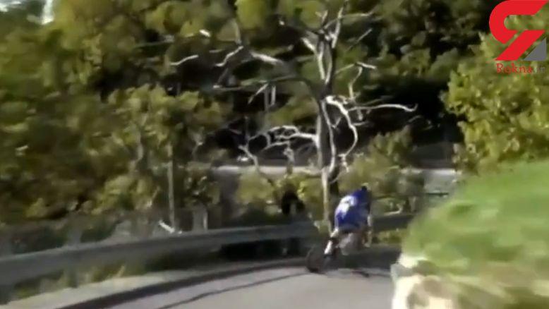 سقوط وحشتناک دوچرخه سوار بلژیکی به دره+فیلم