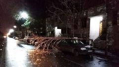 مشهد پس از طوفان دیروز + عکس