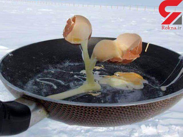 یخ زدن تخم مرغ در حال پختن در قطب جنوب