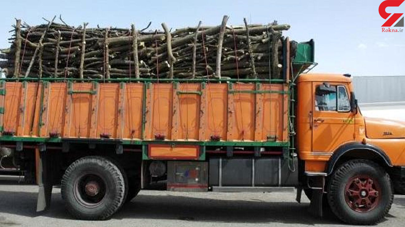 کامیون حامل چوب اکالیپتوس قاچاق در شاهرود توقیف شد
