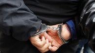 استاد موبایل قاپی در تهران بازداشت شد