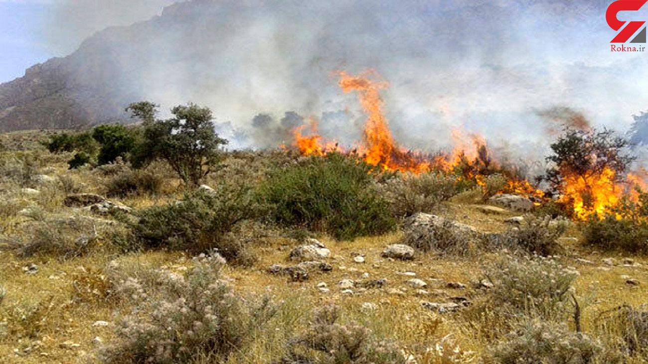 مهار آتشسوزی در منطقه حفاظت شده آقداغ خلخال