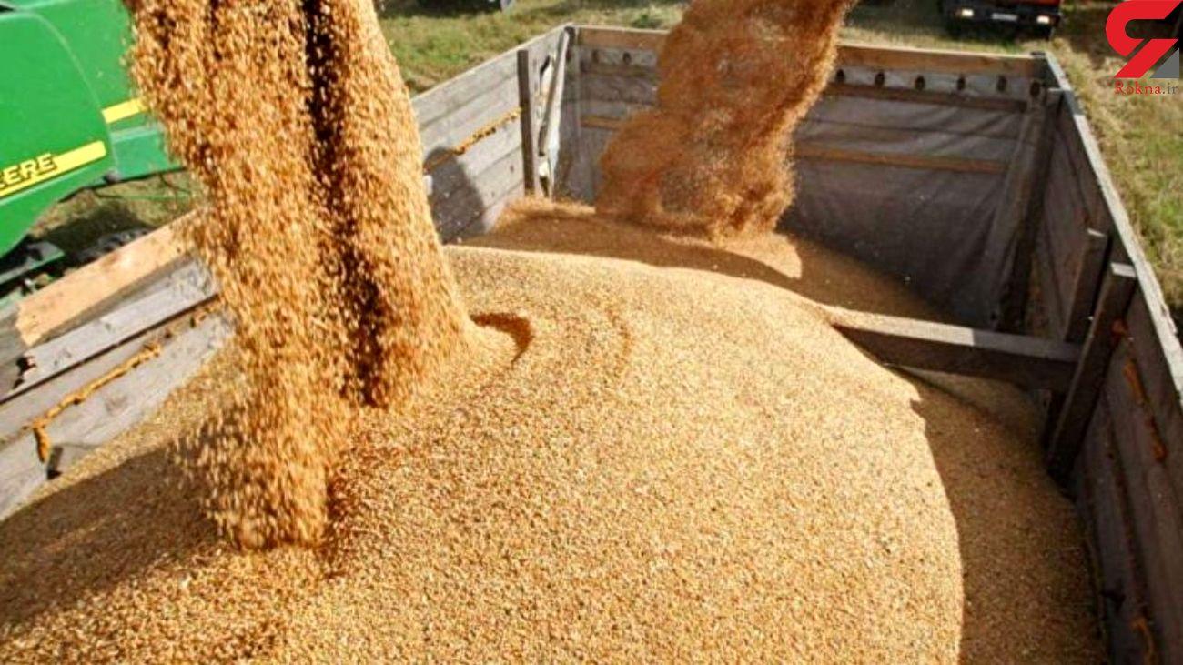 ۲۵ تن گندم قاچاق در غرب خراسان توقیف شد