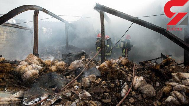 آتشسوزی مهیب در انبار چوب بابل