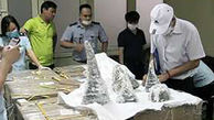 محموله ۱۲۵ کیلوگرمی شاخ کرگدن در ویتنام کشف شد+عکس