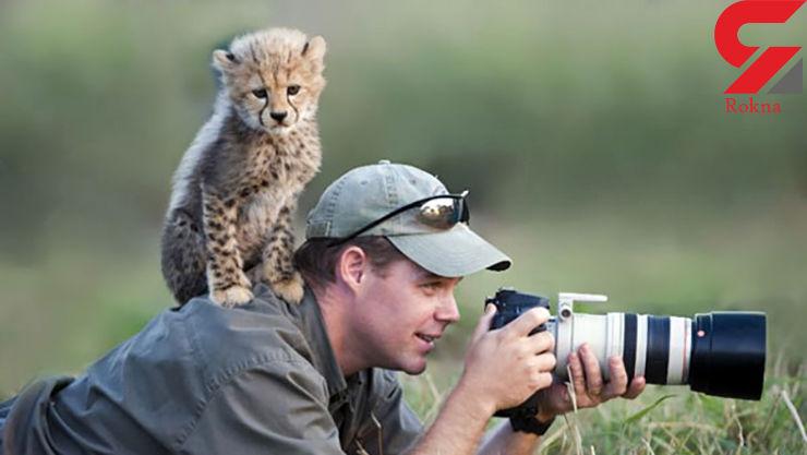 مزاحمت حیوانات برای عکاسان+عکس