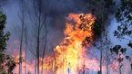 آتش سوزی در جنگل های سوم شعبان دزفول مهار شد+عکس
