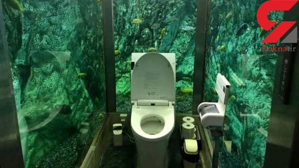 ساخت لاکچری ترین توالت فرنگی برای بانوان در یک آکواریوم+عکس