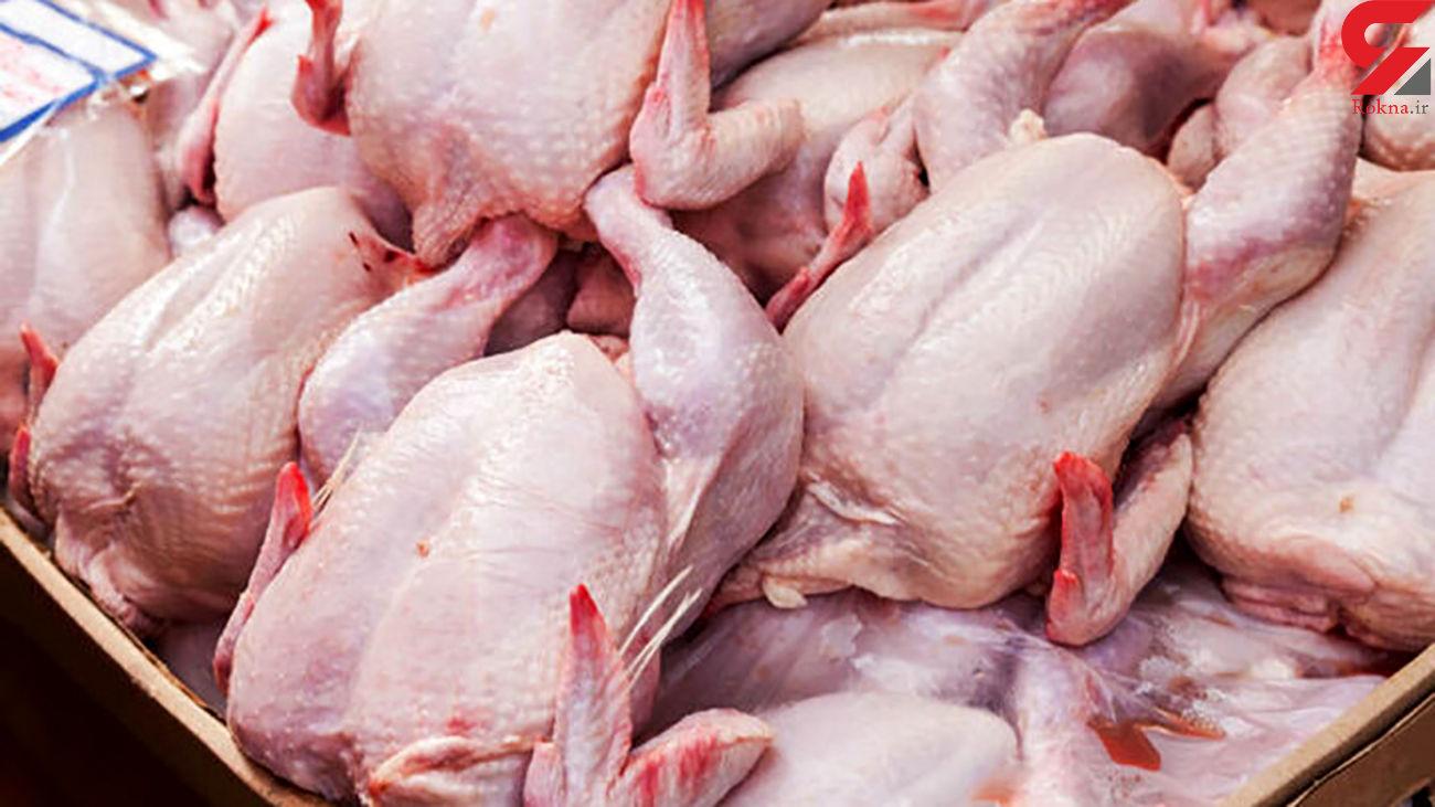 هشدار درباره افزایش دوباره قیمت مرغ