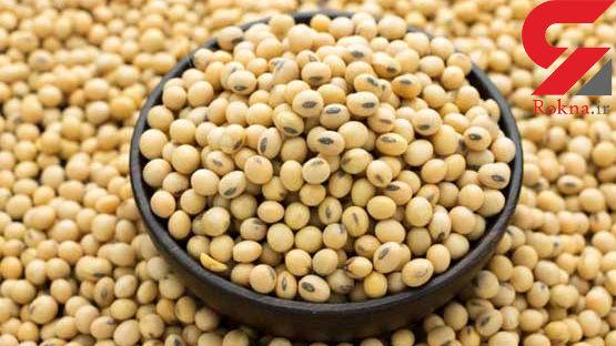 آمریکا بزرگترین فروشنده دانه سویا به ایران شد