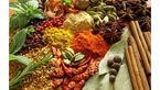 صادرات داروی گیاهی به نام ایران به کام دیگران