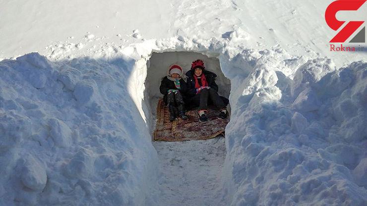 پرسه زدن گرگهای گرسنه در خیابانهای خلخال / بارش سنگین برف پس از 50 سال + عکس