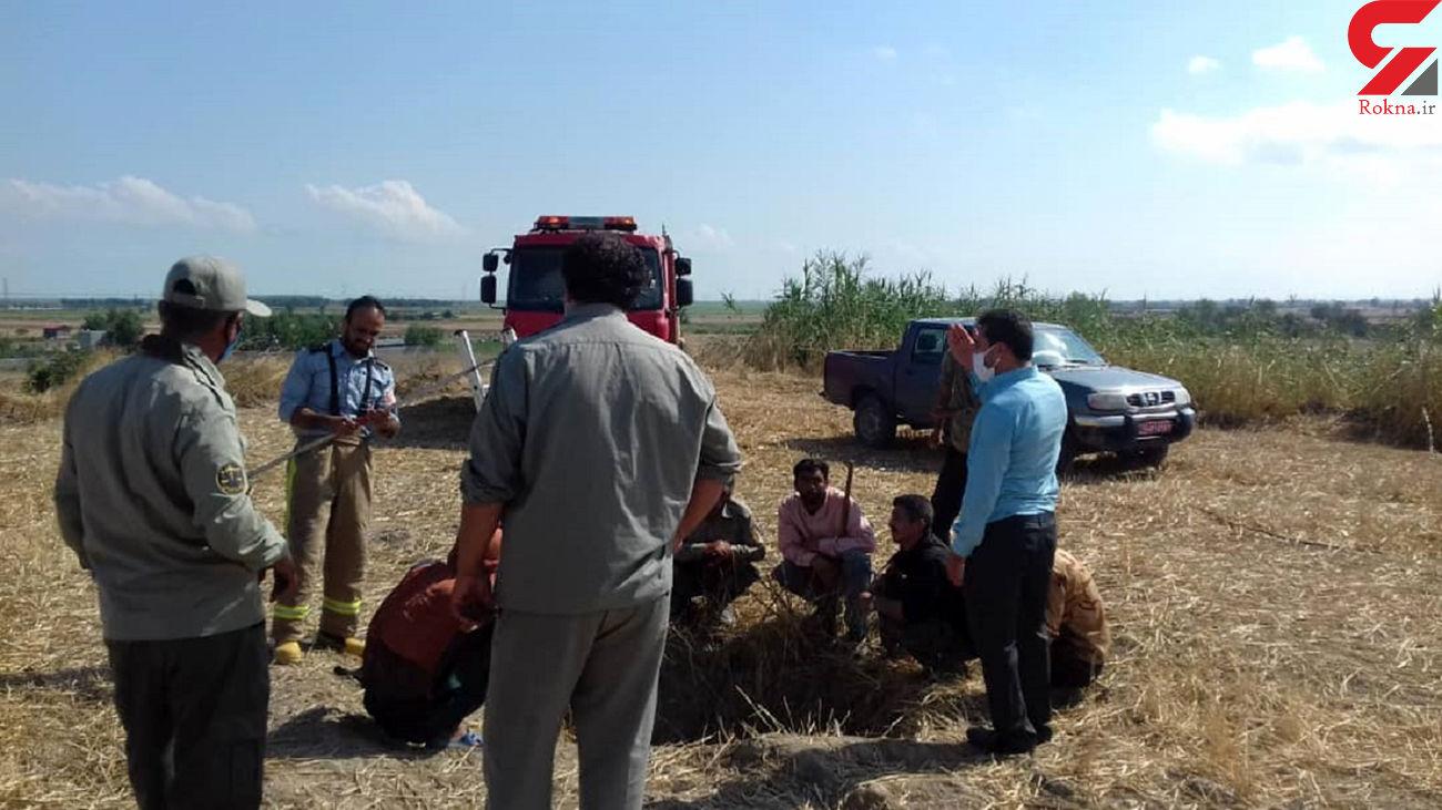 نجات گورکن از عمق 10 متری چاه در گلوگاه