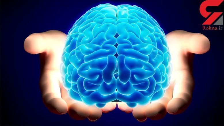 ارتباط رژیم غذایی با پیشگیری از کوچک شدن مغز!