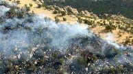 ۱۰ هکتار از مزارع کشاورزی سیروان در آتش سوخت