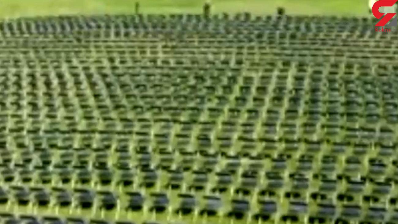 اقدام جالب در کاخ سفید به یاد قربانیان کرونا + فیلم