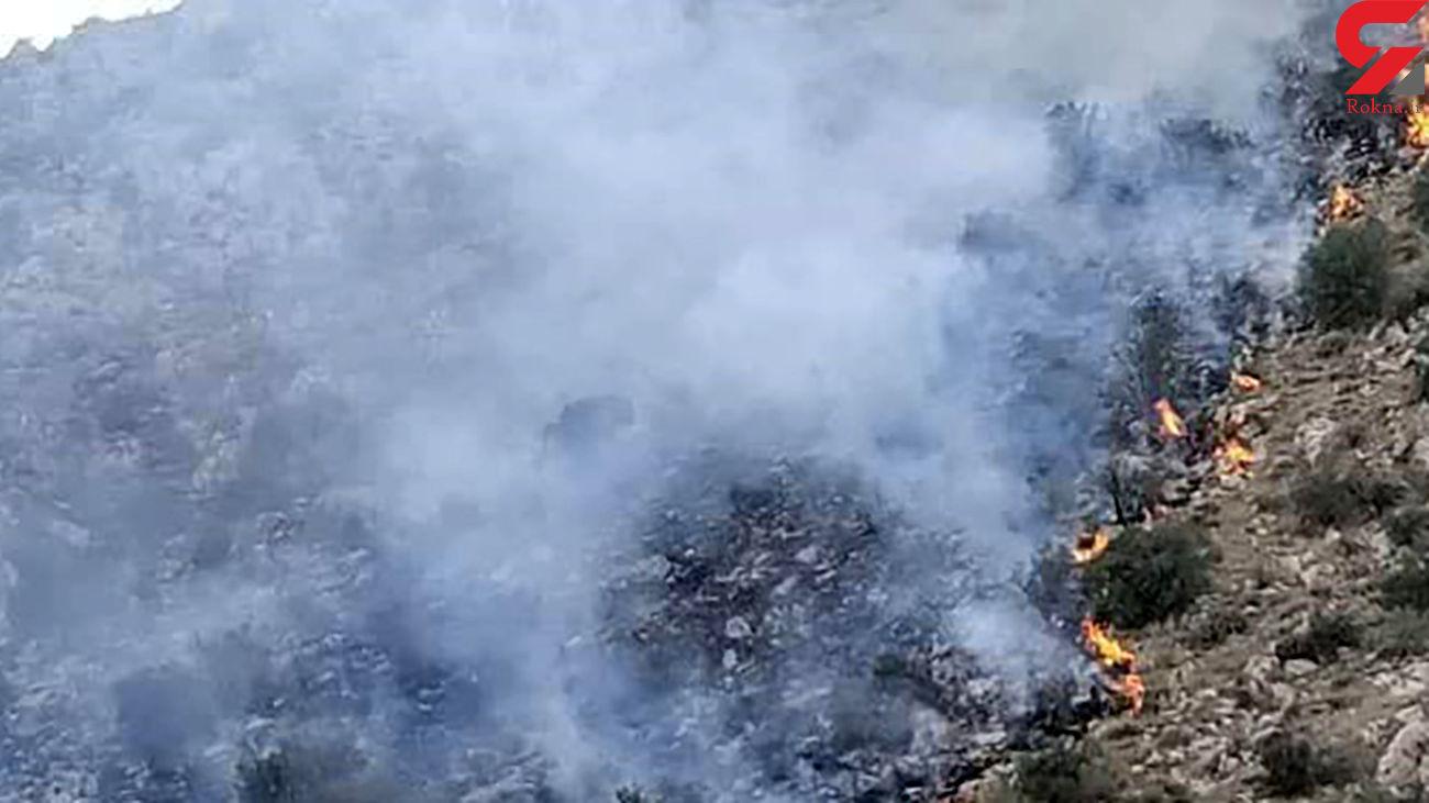 مهار آتش سوزی در مراتع مهارلو / آتش به دکل های صدا و سیما نرسید