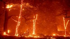 آمار عجیب ناپدیدشدگان آتش سوزی کالیفرنیا