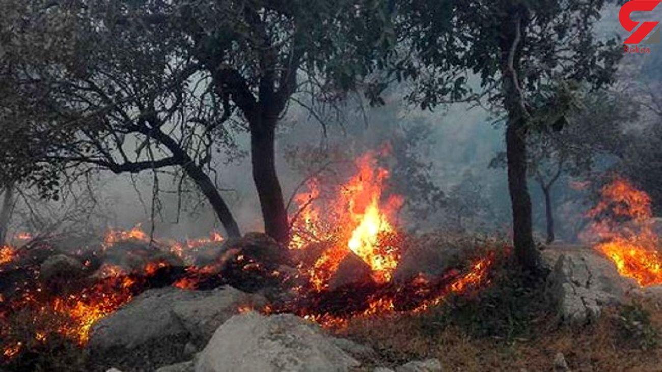 آتش سوزی جنگل گچساران بعد از 2 روز مهار شد