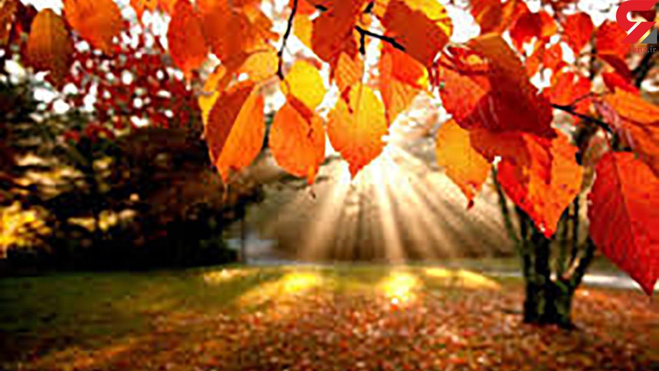 قشنگی های پاییز را مشاهده کنید+ فیلم