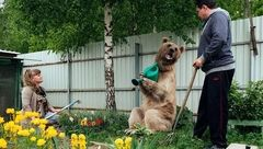 زندگی عاشقانه و صمیمی با یک خرس غول پیکر+عکس