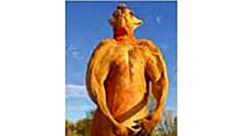 قوی ترین کانگوروی بوکسور جهان جان باخت+ عکس