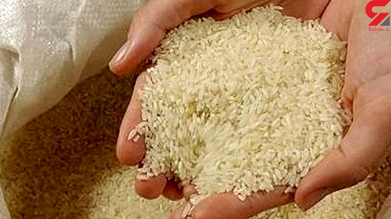 افزایش قیمت برنج ایرانی از مرداد